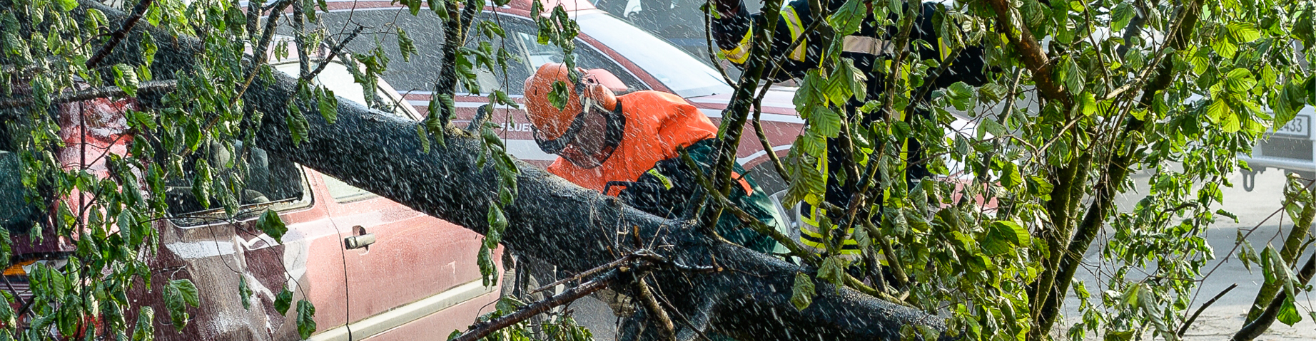 Die Freiwillige Feuerwehr zersägt einen umgefallenen Baum.
